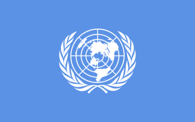 Submission to UN Special Rapporteur on extreme poverty